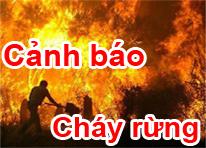 Cảnh Báo Cháy Rừng Lâm Đồng